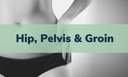 Hip, Pelvis & Groin